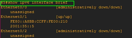 Show IPv6 Interface Brief Command on Router R5