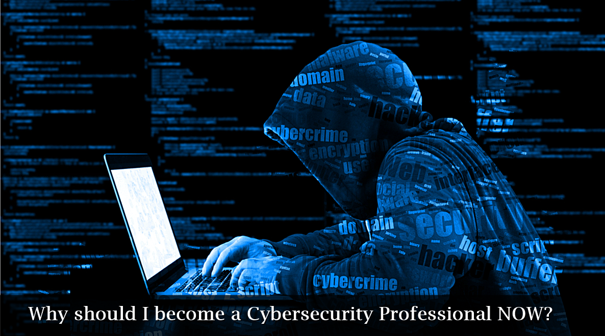 Why should I become a cybersecurity professional now